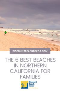 Best Northern California Beaches for Families