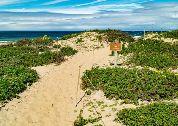 Seaside beach CA